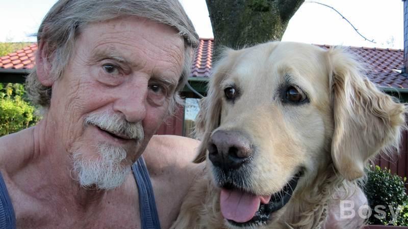 Urlaub mit olli for Urlaub auf juist mit hund