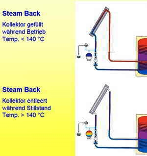 Steamback